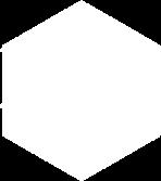 logo_mip